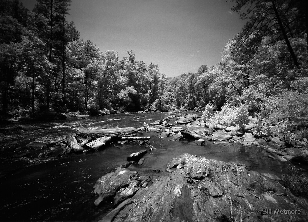 In the Rapids at Sweetwater Creek by Bill Wetmore