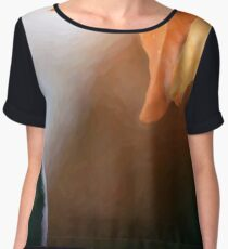 Early Snow Women's Chiffon Top