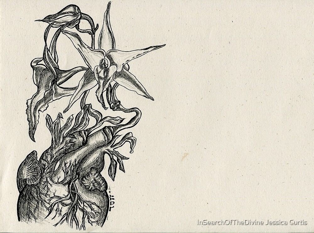 Orchid Heart - Evolve Love by InSearchOfTheDivine Jessica Curtis