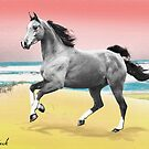 Beach Horse Justin Beck Picture 2015081 by Justin Beck