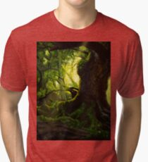 Ancient Tri-blend T-Shirt