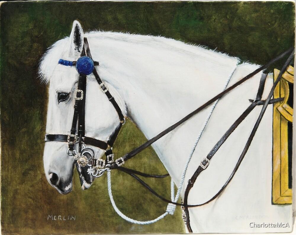 Merlin- the Major Generals Horse by CharlotteMcA