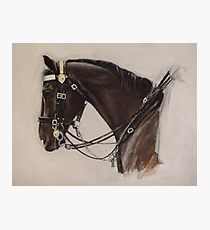 Dunkirk: Household Cavalry Horse Photographic Print