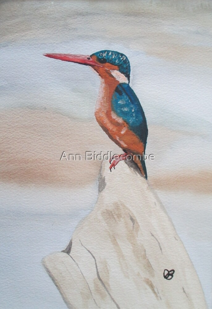 Kingfisher by Ann Biddlecombe