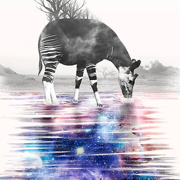 Okapi Drinking Space by kate-vigdis