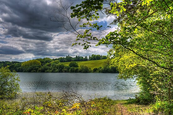 Ardingly Reservoir by Ms-Bexy