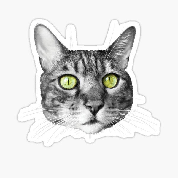 Motif tête de chat noir et blanc aux yeux jaunes Sticker