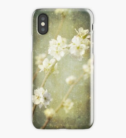 Spring's Enchantment iPhone Case