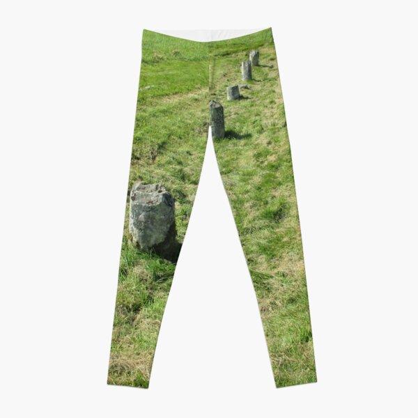 M.I. #120  ☼  Countrytide Breakers (Hadrian's Wall) Leggings