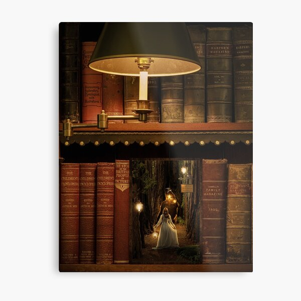 The Little Library Metal Print