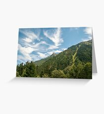 Alpine forest photographed near Mittersill, Tirol, Austria  Greeting Card