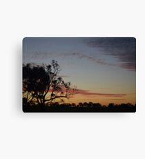Bush Sunset Canvas Print