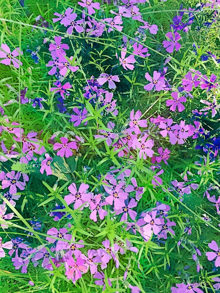Flowers by UllaRuis