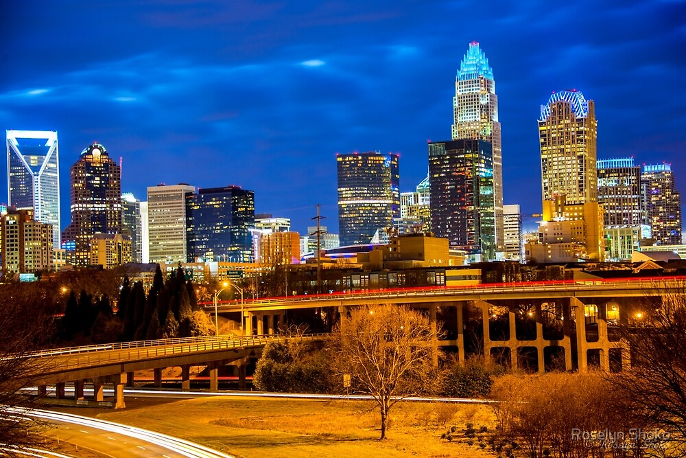 Charlotte at Twilight by Roselyn Shoko
