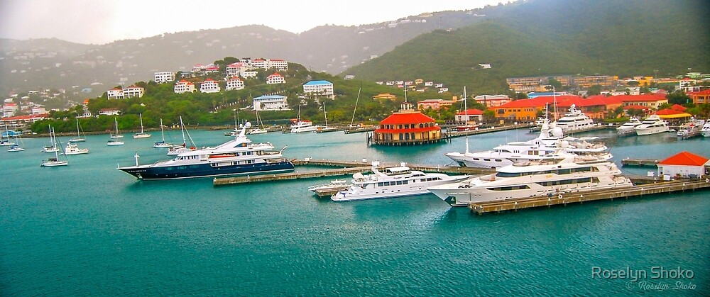 St Thomas Harbor by Roselyn Shoko