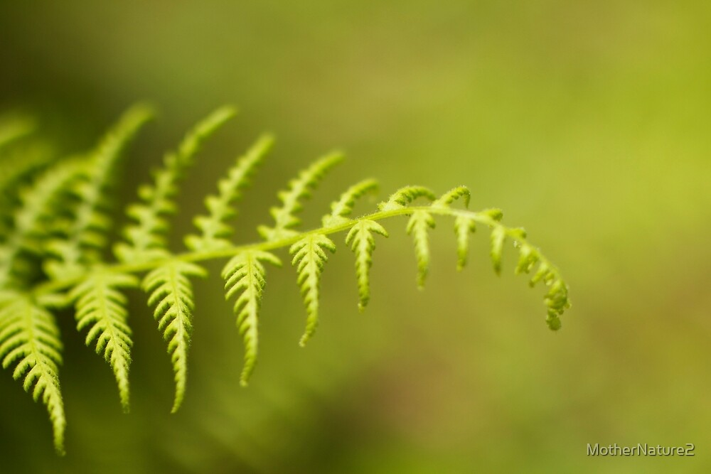 Reaching by MotherNature2