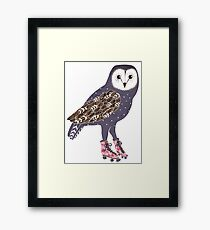 I skate OWL night long Framed Print