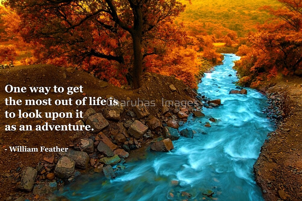 Life is an adventure by Charuhas  Images