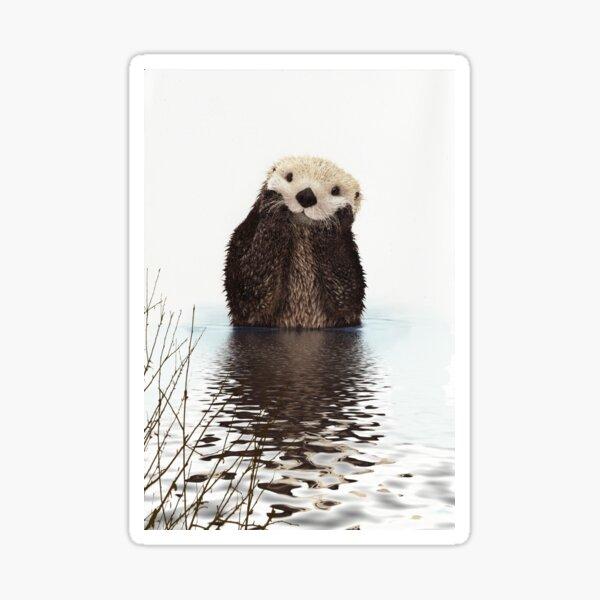 Brooding Otter  Sticker