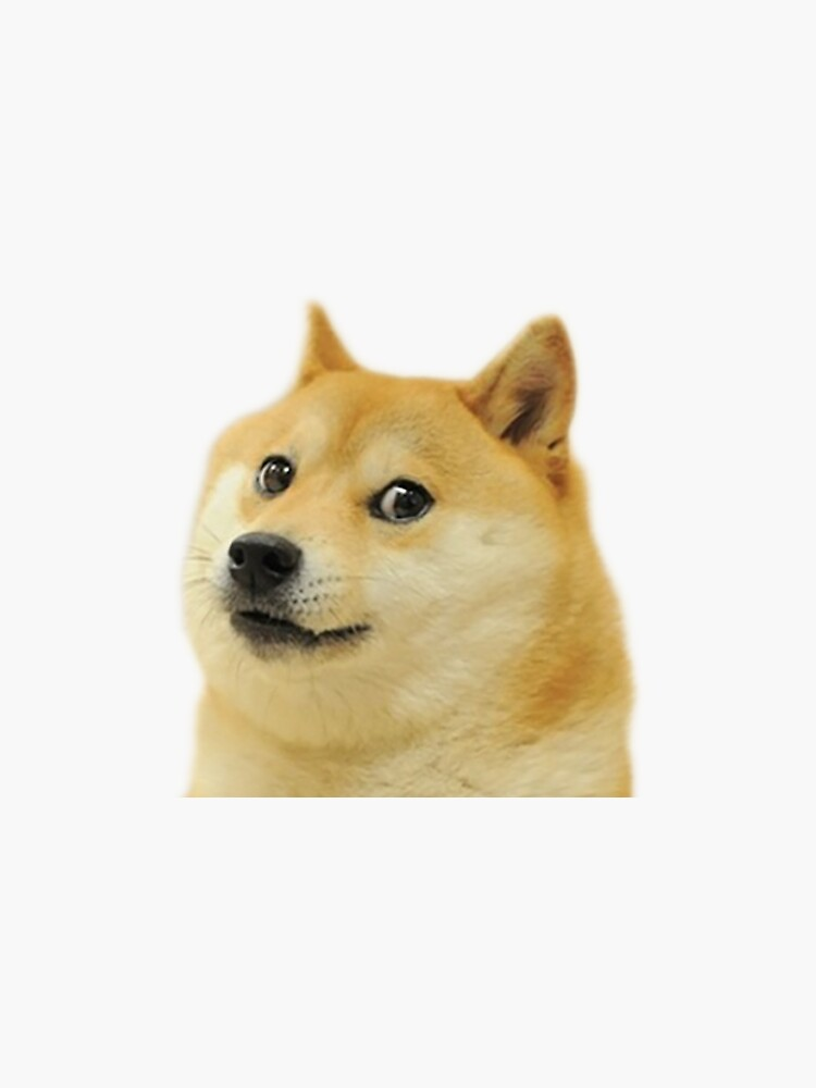 Dogecoin Shiba Inu by Pesto-Festo