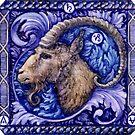 Capricorn by CandelaRiveros