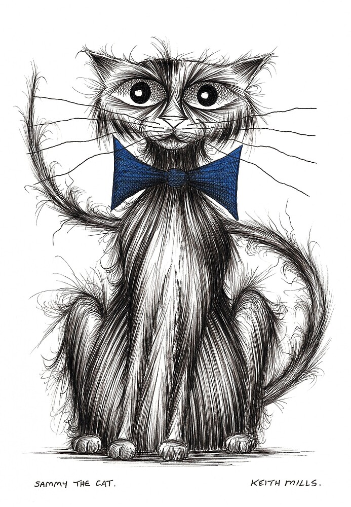 Sammy the cat by Keith Mills