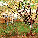 Orchard in Blossom, Vincent van Gogh.   by naturematters