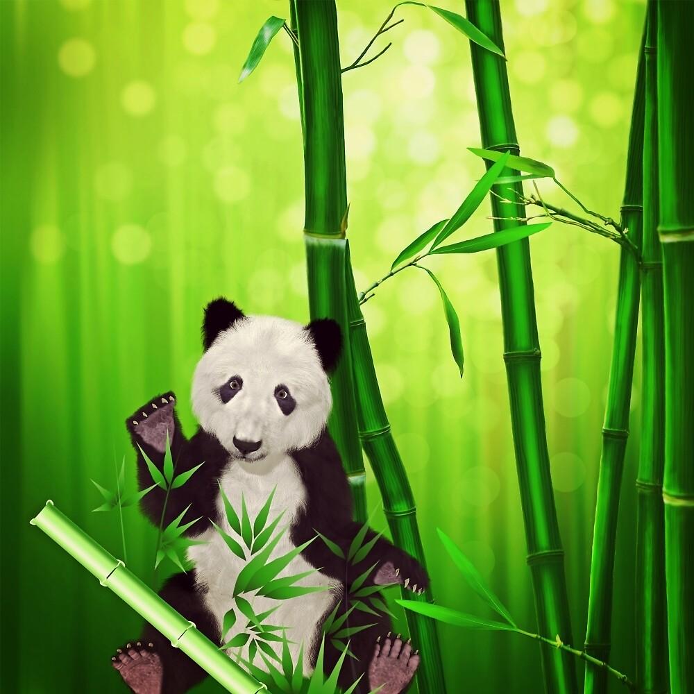 Asia Panda Bear by Sven19864