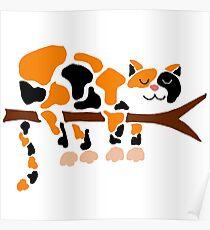 Coole flippige lustige Kaliko-Katze im Baum Poster