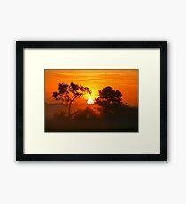 """Foggy Summer Morning Framed Print"