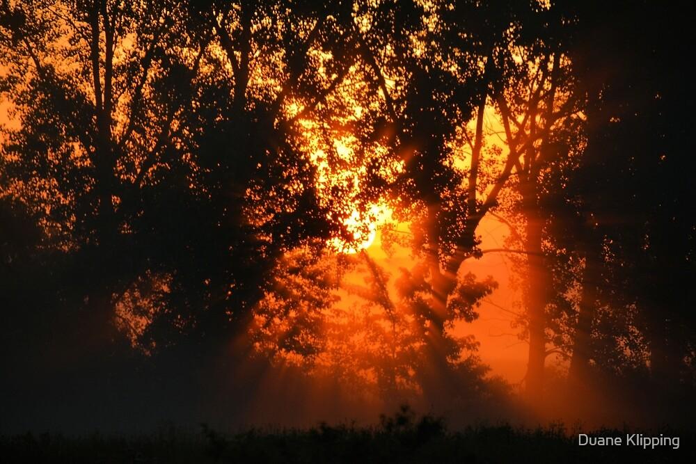 Summer Fog by Duane Klipping