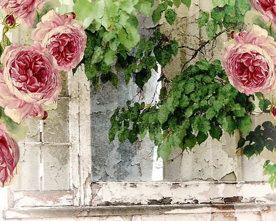 Cottage Window Shabby Roses by mindydidit