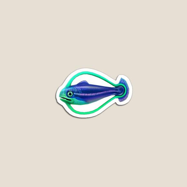 Hoop Fish Magnet