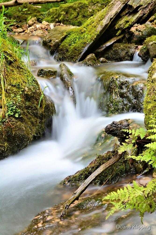 Return To Mossy Glen by Duane Klipping