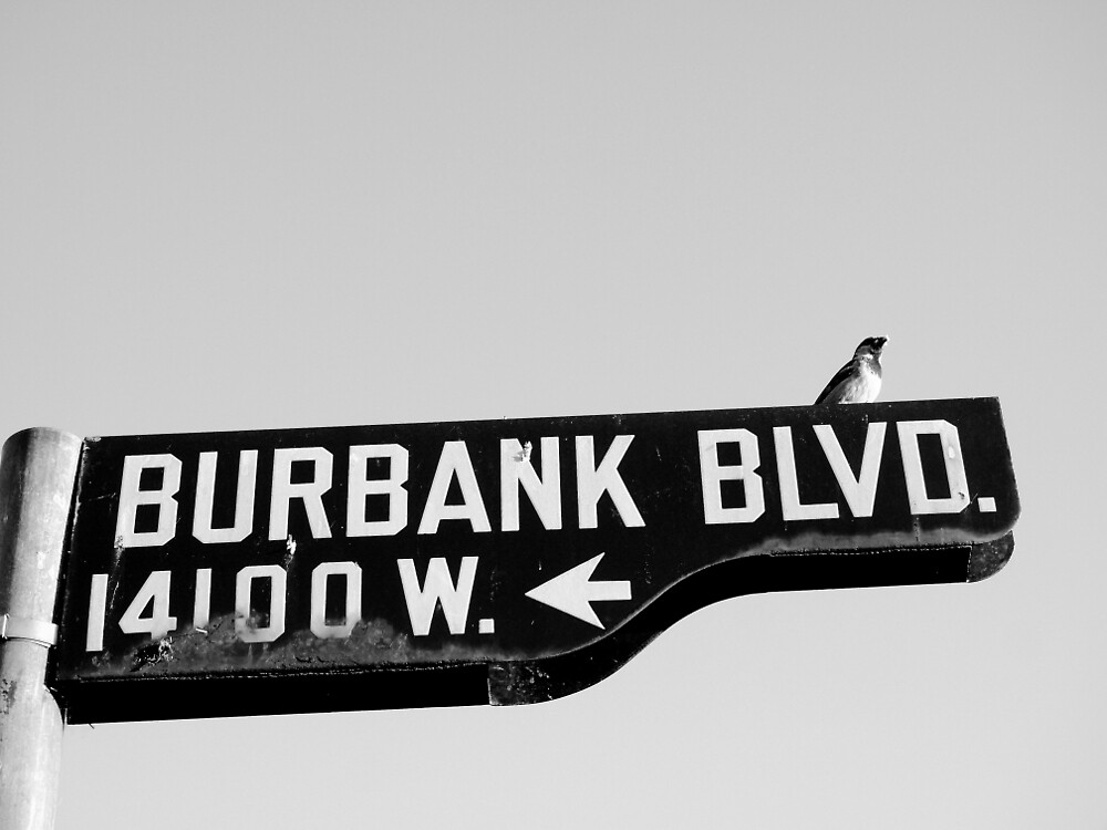 Burbank and Bird, Los Angeles, California by Douglas E.  Welch