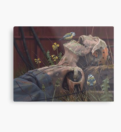 On the activities of primates and passerines Metal Print