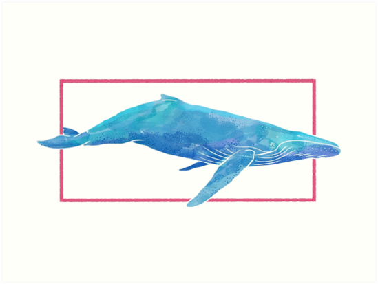 Whale Illustration by BovaArt