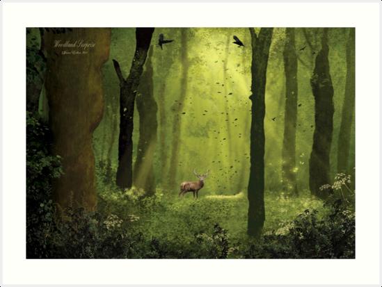 Woodland Surprise by JaneEden