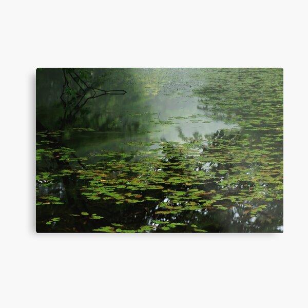 Moonlight Blues - 静かな池のブルース Metal Print