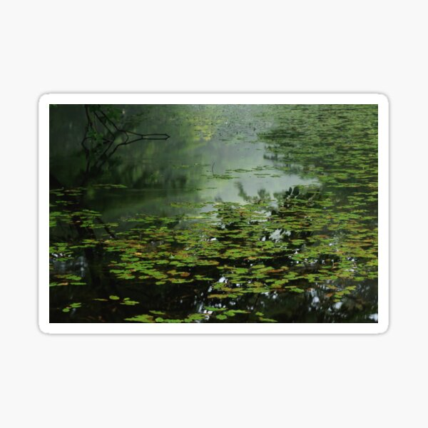 Moonlight Blues - 静かな池のブルース Sticker