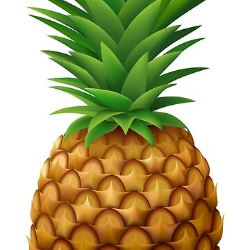 Pineapple! by Qace