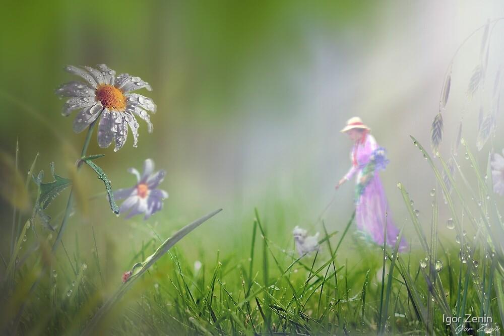 Meadow Float by Igor Zenin