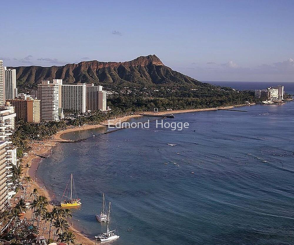 Honolulu Hawaii by Edmond  Hogge
