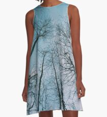 Blue Skies A-Line Dress
