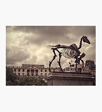 'Gift Horse' by Hans Haacke Photographic Print
