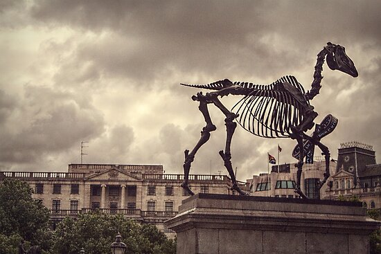 'Gift Horse' by Hans Haacke by SarahEL17