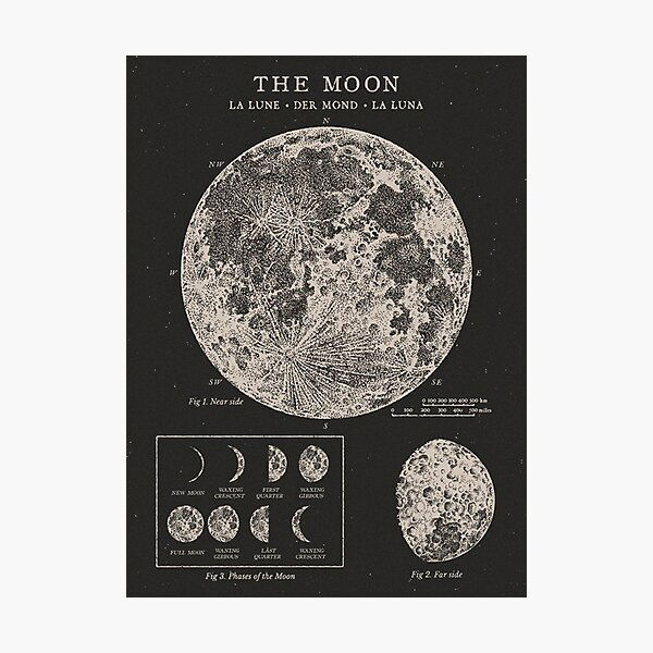 Moon Phases Vintage Poster Photographic Print