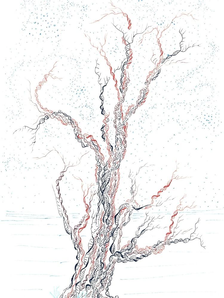 Genetische Zweige (handgemalte Tinte auf Papier) von rvalluzzi