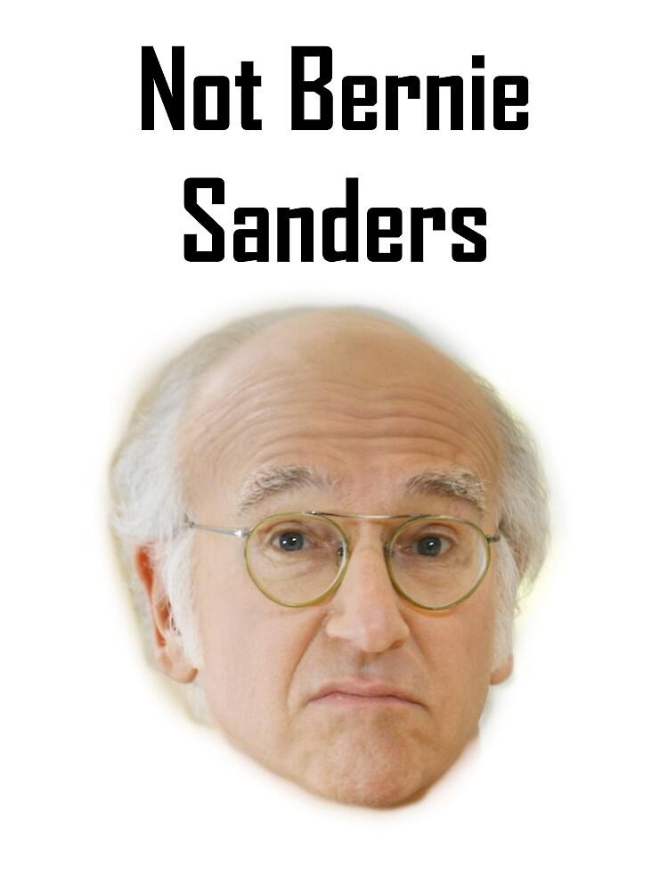Not Bernie Sanders by ladybel