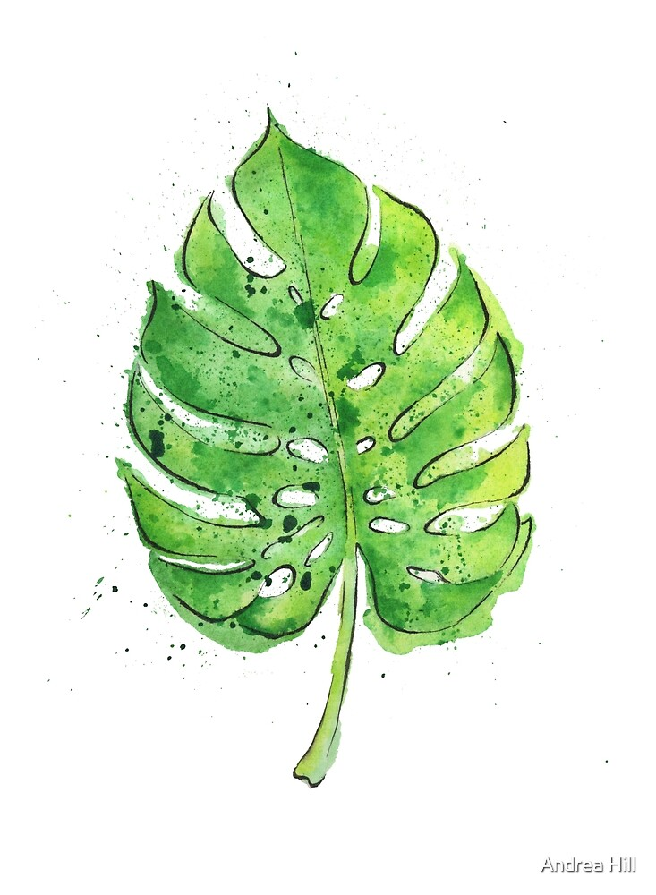 Watercolor Painting of a Philodendron Leaf  by Andrea Hill